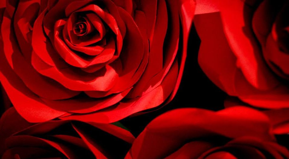 Book&Roses: Motus di V. Muscella GranGalà di FineAnno RadioSonar