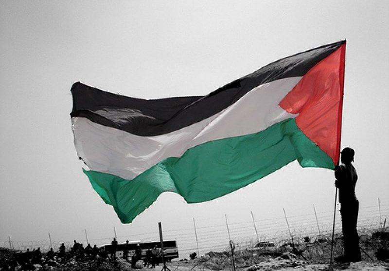 Buongiorno Palestina: Esistere per Restistere