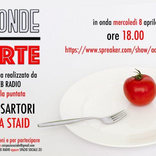 Zei Radio ad onde corte – Davide Sartori e Andrea Staid