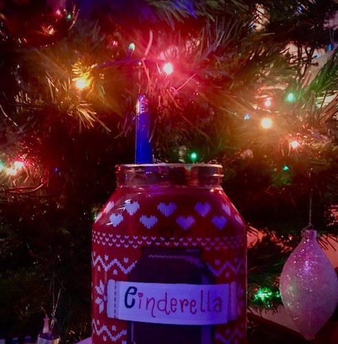 Cinderella's show 2.12 – Natale in casa